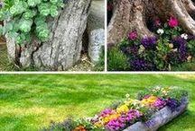 Pour votre jardin atlantique