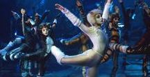 Cats / All things from Cats the musical