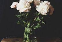 // flower //
