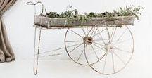 Carts - Vintage rentals by Memorias del Ayer