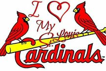 ST LOUIS CARDINALS / by Val Kosa