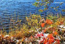 My Kuusamo photos / My own photos of the Nature in Ruka-Kuusamo-Finland,where I live... Coutry side, Ruka skiresort & Oulanka National Park