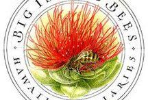 Honeybee Design / Creative designs that incorporate honeybees or any pollinator.