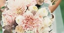 boquets / Lots of different kinds of boquets, which can be used for the bridal boquet