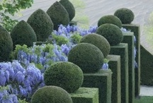 EXTERIORS | Green / Gardens, plants, parcs Jardins, plantes, parcs