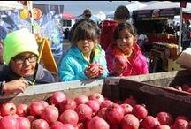 Heart of Pomegranate Country / Madera Pomegranate Festival Nov. 2, 2013