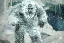 Yeti Tracking / We have what you need to find the Yeti!