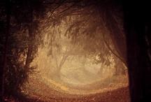 L'obscurité d'un lointain monde!!!!