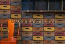 Voor de jongenskamer / behang, gordijnen,borders en stickers voor de jongenskamer