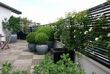 Fences and Screens / A collection of garden fences and screens for ideas and design inspiration.