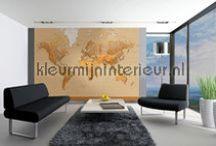 wereldkaart / behang en fotobehang