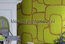 Retro behang / Retro wallpaper. Behang met een uitgesproken karakter