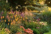 GARDEN – Gardener's Joy