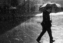 дождь  ☂the rain*туман*fog, mist, haze / Эй ты, друг или прохожий Улыбайся, не грусти, День сегодня непогожий, Но ведь нам-то по пути.