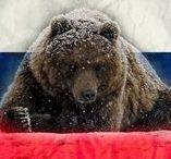 мишки, медведи*bears / Жаль, страны Медведии  нет в энциклопедии.