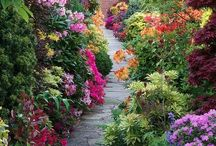 Garden / Join me in the secret garden. Beautiful Gardenscapes and Gardening Ideas