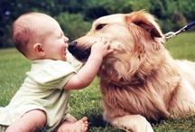 Man's Best Friend / by Elvania Da Rosa