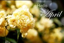 Hello April / by Linda  Bell