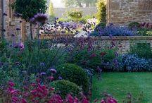 Garden Ideas / by Fay