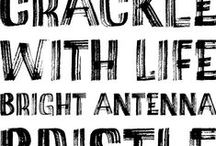 Type Design / Type design, type specimen, script fonts, alphabets, Open Type fonts.