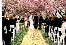 Spring Weddings / by Ecoura Jewelry