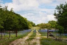Nature & Parks of Kerrville
