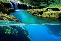 Tropical Paradise / Dream destinations / by Pia Ursula