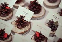Eco-Friendly Wedding Ideas / by Ecoura Jewelry