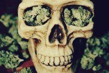 Glazed / Anything having to do with the whimsical magic of marijuana / by Sydney Hart
