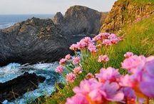 Ireland/GB