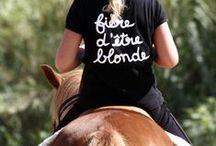Nos amis les bêtes / La faune de Saint Cyprien