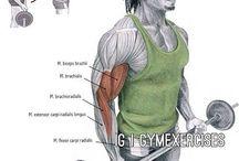[ Workout techniques ]