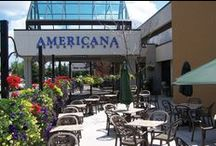 Americana Waterpark Resort Hotel & Spa / Niagara Falls Tourism - Travel Trade,  Travel Trade Ambassador  Americana Water park Resort Hotel & Spa