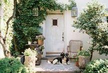Gardening Ideas / Some gardening inspiration for the green-fingered.