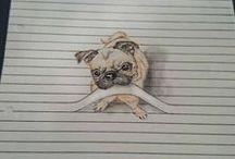 Illustration: animals   Иллюстрации: животные