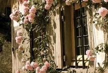 Versailles: Hameau de la Reine