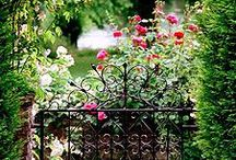 Gardening / Small or large, your outdoor space should feel always feel welcoming.