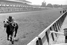 Thoroughbred Racing Greats