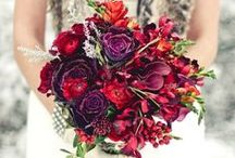 Red & Purple
