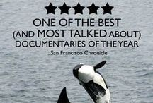 Blackfish / Movie that has disposed the cruelties that take place to Orca's held in captivity worldwide
