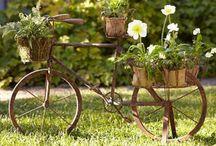 Gardening & container ideas
