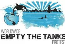 Empty the tanks / Freedom for the whales and dophins living in captivity. Stop the breeding, and take them to sea pens.