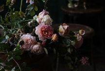 LINDIVIDU * roses