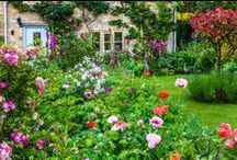 Garden ideas / These garden ideas will help you create your dream garden whether it's a tranquil space to relax, an alfresco dining area to entertain or a space for children to play.