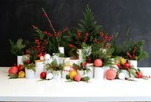 Christmas Party / Entertaining ideas for Christmas.