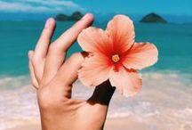 Spring mood / Inspiración primaveral. ¡Porque nos encanta este momento! Déjate llevar por nuestra primavera más tropical: krackonline.com