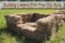 Glorious Compost / If you have a food garden you must have a compost pile. Period.