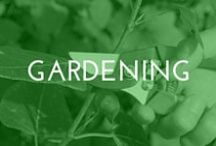 Gardening / All things gardening! Inspired by GardenHome - our line of garden tools