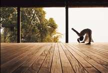 Joga | Yoga