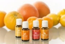 My Young Living Essential Oils / The Missing Link in Healthcare  https://www.youngliving.org/debbikemp